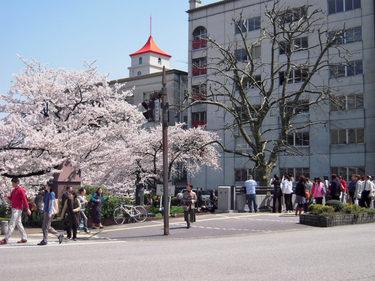 15 朱い屋根と桜