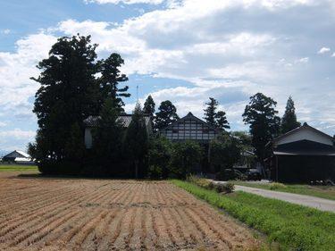 31 カイニョ-屋敷林-